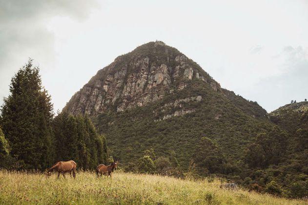 Cultura muisca, la apuesta para atraer turistas a Bogotá, Cundinamarca y Boyacá