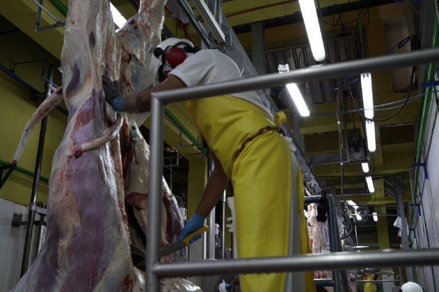 Bloqueos y pandemia afectaron la producción de carne de res