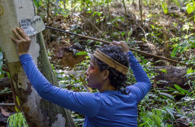 """Futura líder Mura en un área con árboles marcados con nombres falsos. Los ilegales talan en las reservas los árboles grandes de maderas grandes, que no han sido marcados con placas. Para los Mura """"se está cometiendo un crimen silencioso contra la Amazonía."""
