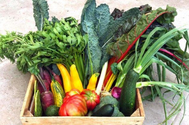 La Trocha: productos amigables con el medio ambiente, de la tierra al plato