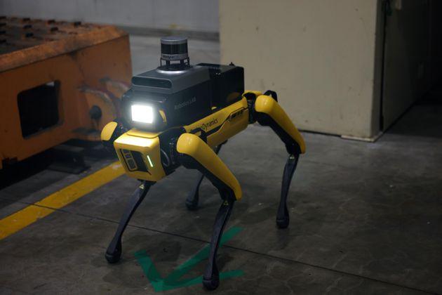 Robots guardianes de seguridad, la apuesta de Hyundai Motor