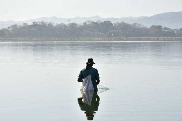 Conozca los semifinalistas del concurso de fotografía ambiental del Atlántico