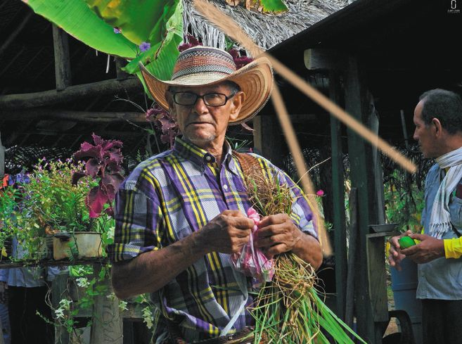 Un campesino o indígena con un ABIF saca de 15 a 25 productos para consumo / Juan José López