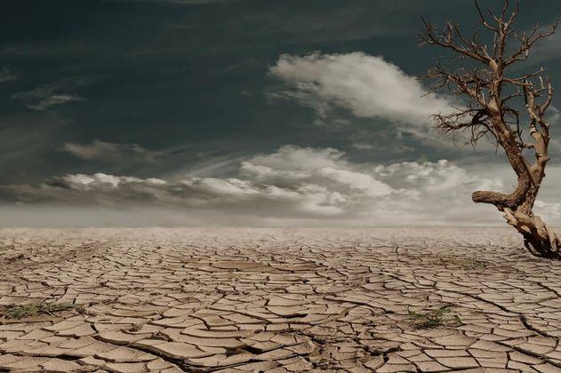 ONU advierte que la salud humana estará en grave riesgo si no protegemos el ambiente