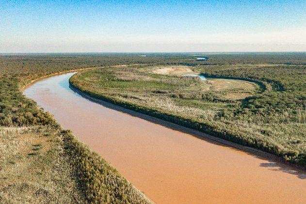 La segunda selva más grande de Sudamérica está siendo destruida