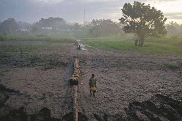 La selva amazónica emite más CO2 del que es capaz de absorber
