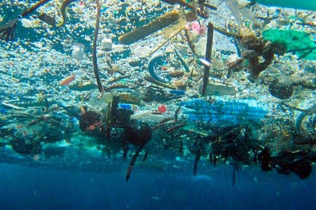El océano, un pulmón clave para el planeta en la crisis climática