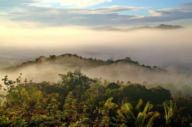 Indonesia quiere implantar su nueva capital en el este de Borneo