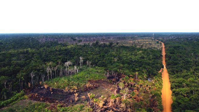 Vista aérea de la deforestación en el costado izquierdo de la aldea de Itaparaná. La aldea queda al lado de la transamazónica BR 230, por esta carretera salen los camiones con cargamento de árboles talados ilegalmente.