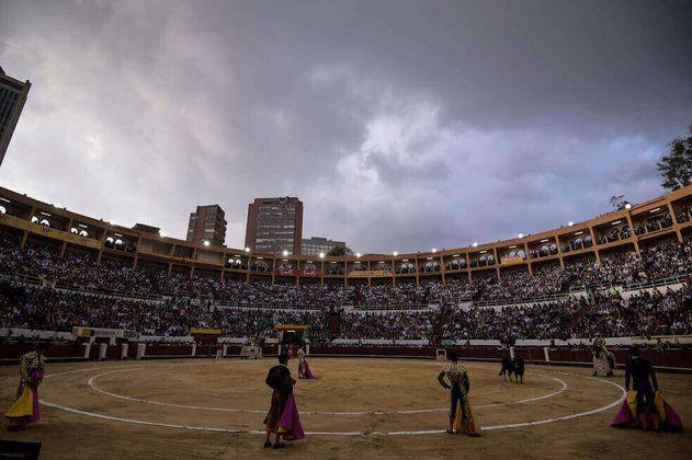 ¿Es viable regular las prácticas taurinas? El debate llega al Concejo de Bogotá