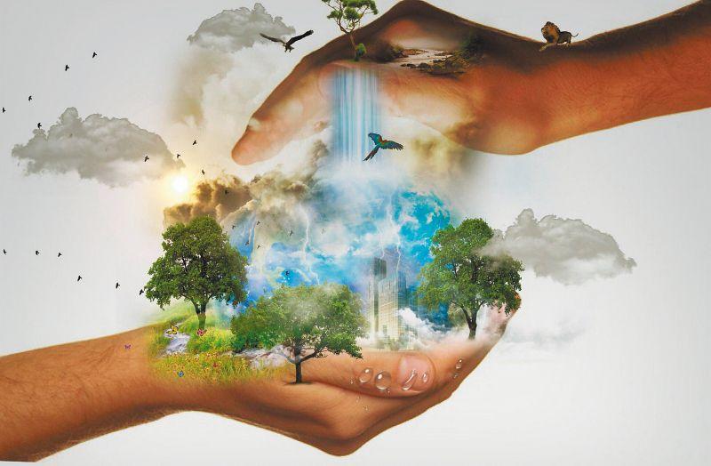 Día mundial del medio ambiente: 8 acciones para cuidar el planeta