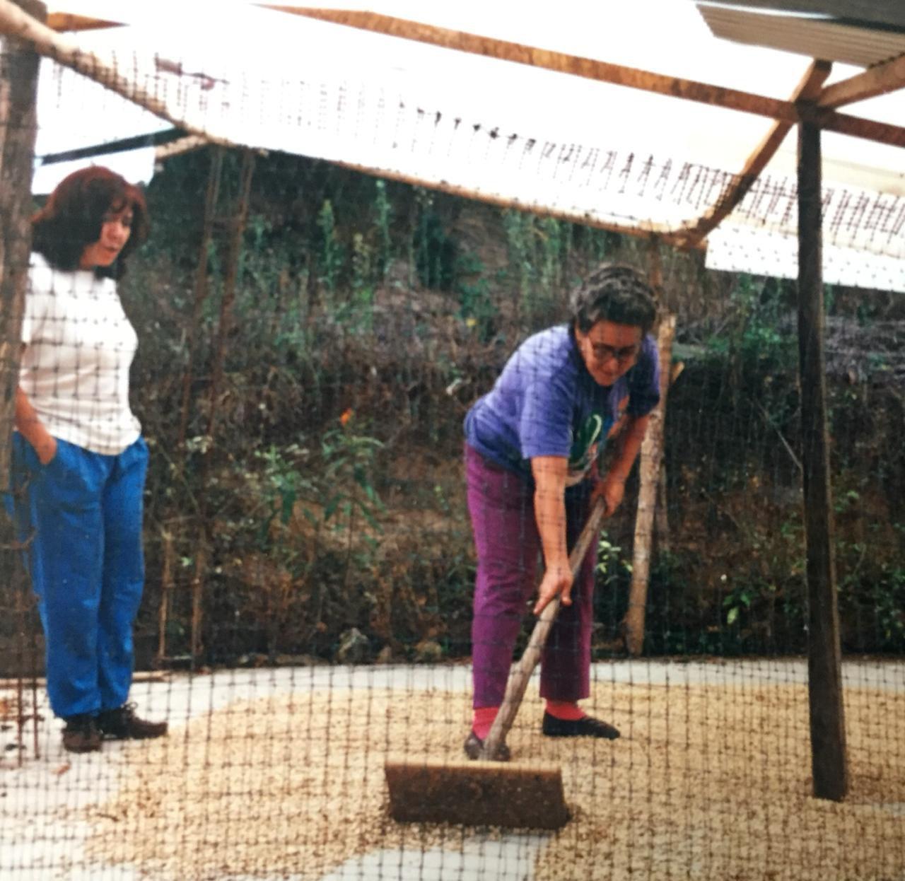 Nina en sus cultivos de café, en Guayatá, al suroccidente del departamento de Boyacá.
