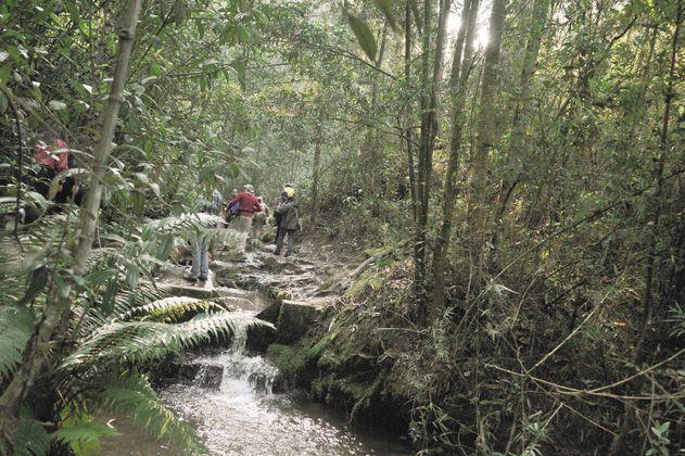 ¿Cuánto tiempo y dinero donaría para conservar las quebradas de Bogotá?