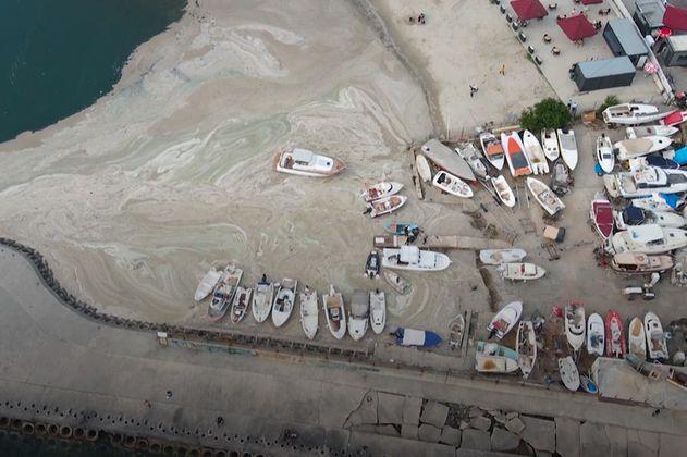 """¿Qué es el """"moco marino"""" que se expande por el Mar de Mármara en Turquía?"""