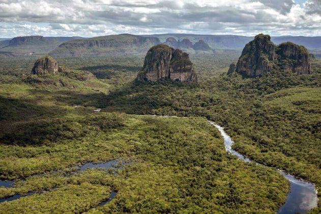 Guardaparques de la Amazonia salen de áreas protegidas por amenazas