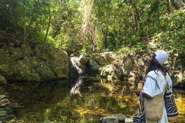 ¿Cómo están las áreas protegidas del segundo país más biodiverso del mundo?