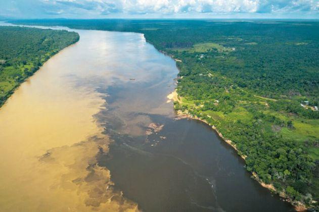 Estudio muestra avances en conservación de ecosistemas de agua dulce en la Amazonia