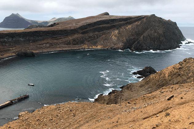 Proyecto minero amenaza delfines y pingüinos en isla de Choros en Chile