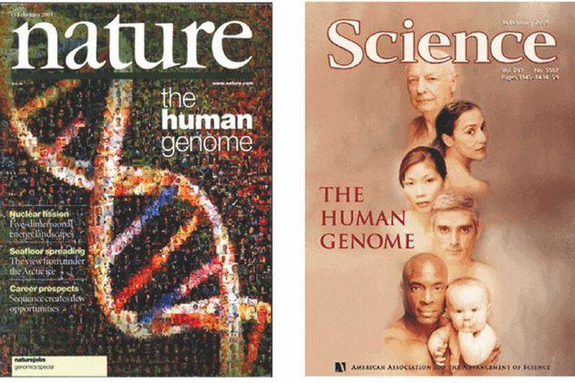"""Genoma humano: 20 años de la construcción del """"mapa"""" de la vida"""
