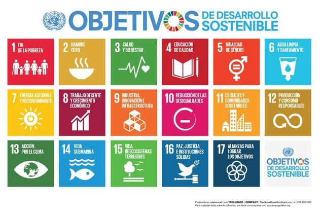 El 24% de los ejecutivos colombianos no conoce los Objetivos de Desarrollo Sostenible