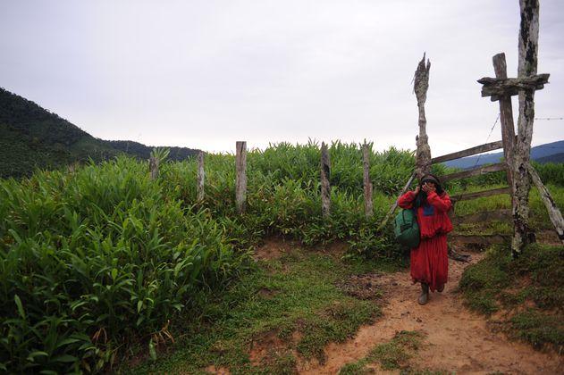 Indígenas de Antioquia denuncian amenazas contra ocho líderes de la comunidad