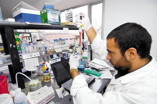 Academia de Ciencias pide al Gobierno convocar expertos para investigar sobre coronavirus