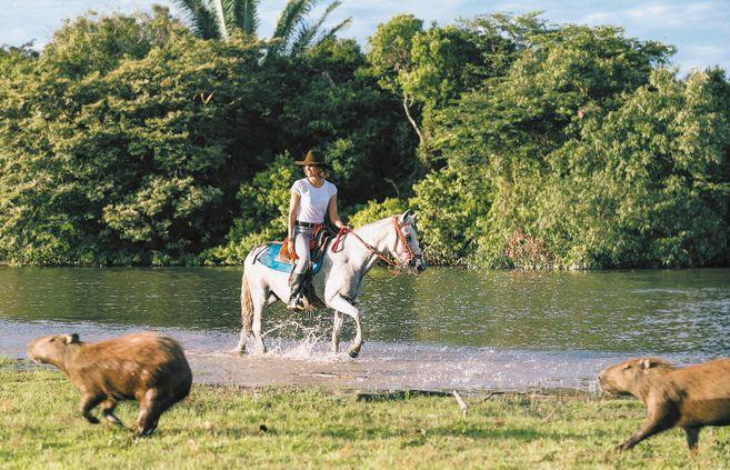 Industria del turismo en Colombia será reconocida por su liderazgo y aporte a la reactivación económica.