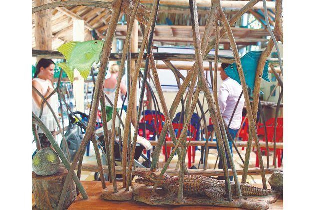 Asocaimán: de cazadores a guardianes del caimán aguja