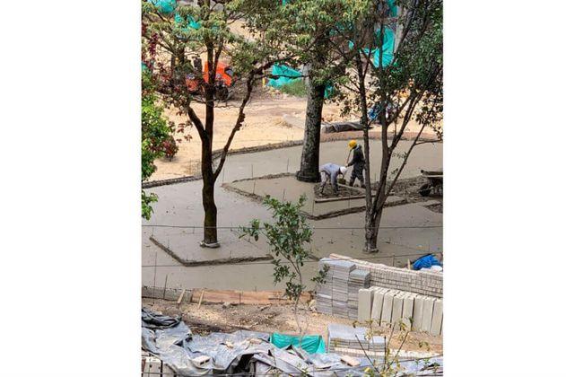 Polémica por cemento en bases de árboles del parque Japón, oriente de Bogotá