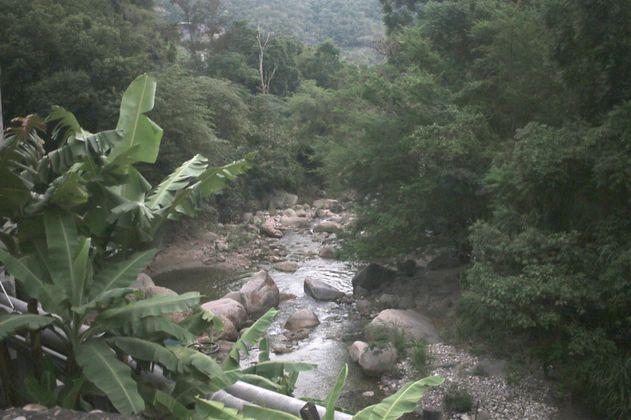 """La ciencia detrás de """"MiPáramo"""", un proyecto de conservación en Santurbán"""