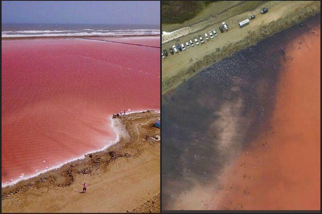 """¿Por qué se puso negro el """"mar rosado"""" de Galerazamba?"""
