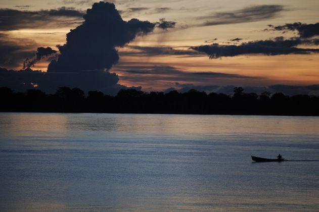 Un foro sobre cambio climático, desde la Amazonía, en el Día mundial del medio ambiente
