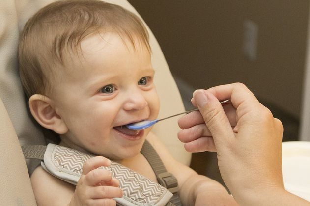 Los micronutrientes básicos en la alimentación infantil