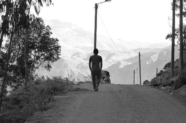 Entre vivir o dirigir un museo en Colombia (Realidades ficcionadas)