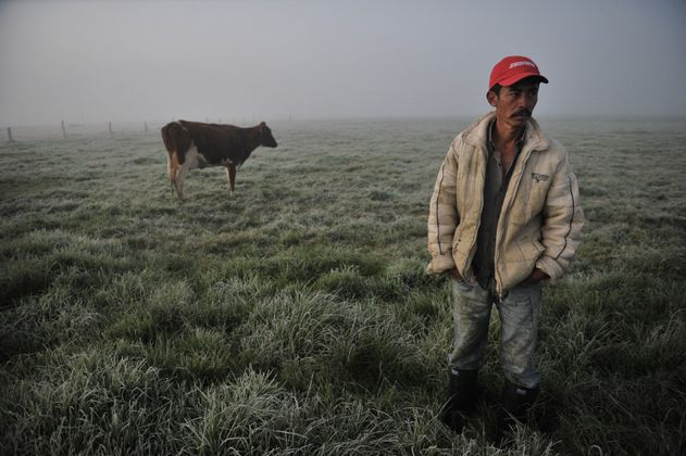 Perdidas más de 10.000 hectáreas de cultivos por época de heladas y sequía en Cundinamarca