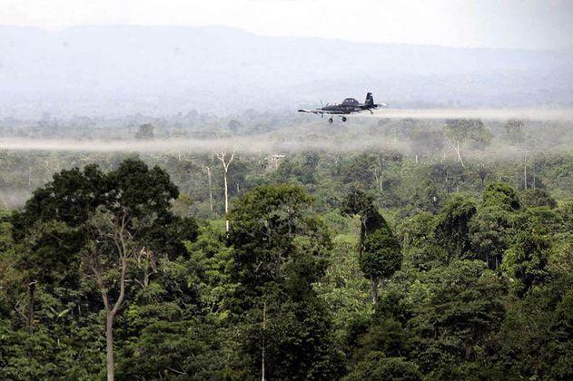 Asamblea Departamental de Putumayo rechaza método de aspersión aérea con glifosato