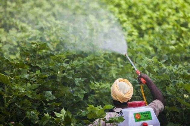 Francia impondrá una distancia mínima a los pesticidas en torno a las casas