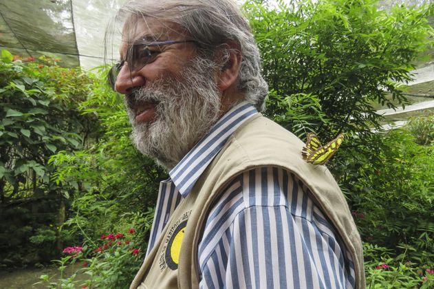 El hombre que ha pasado toda la cuarentena en un jardín botánico