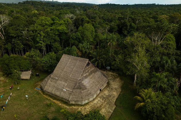 Día mundial de la selva: 10 razones para proteger la Amazonia