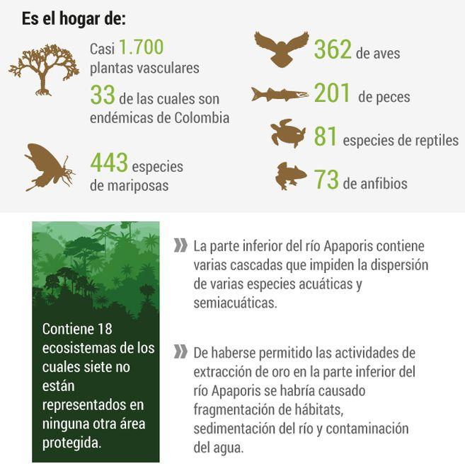 Biodiversidad de la zona.