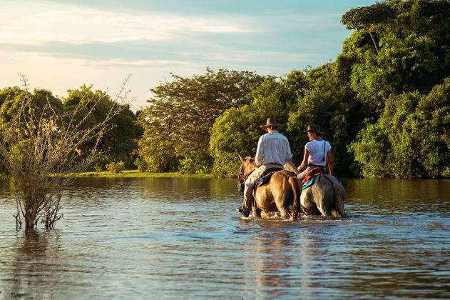 Turismo de naturaleza, oportunidad de las regiones para la reactivación del sector