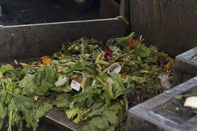 Desperdicio de alimentos se agrava por el turismo