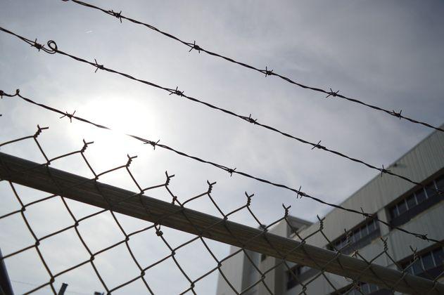 Hombre fue condenado a seis meses de cárcel por matar a un perro en Cundinamarca