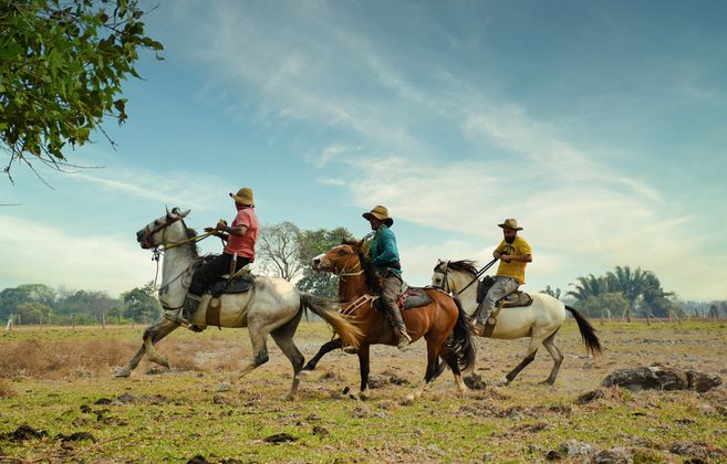 Otras de las múltiples opciones para vivir la experiencia del Llano, es la Finca el Madrazo, en el Hato Corozal.