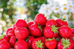 Fresas: beneficios y propiedades que te sorprenderán de esta fruta