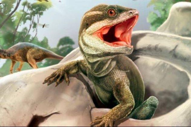 Científicos encuentran nueva especie de reptil ancestral en Suramérica