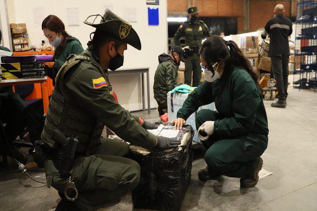 Distrito incauta 566 especies silvestres que iban a ser traficadas en Bogotá